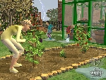 The Sims 2 /0